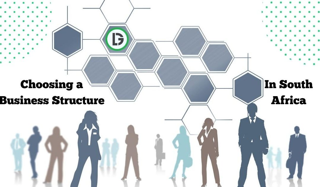 business structures in south africa